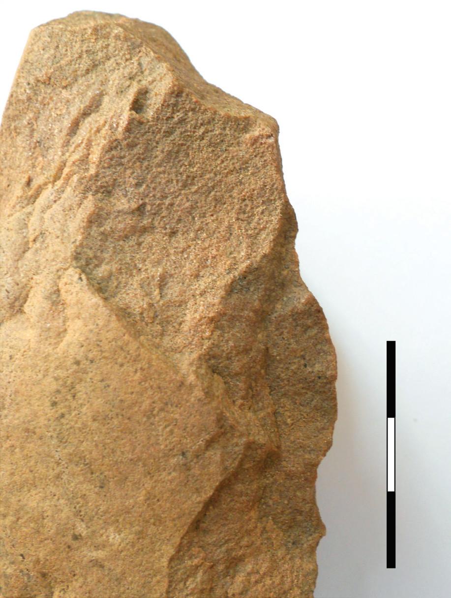21 pav. Skaldytinis, Pasieniai 1, Nr. 607, jotnio smiltainis (Gabrielės Gudaitienės nuotrauka) / Fig. 21. Jotnian sandstone core no. 607 from Pasieniai 1 site