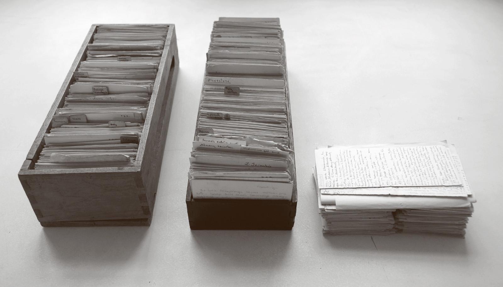 1 pav. M. Alseikaitės-Gimbutienės kartotekos kortelės (VUB RS, f. 154–503/1–3). G. Petrausko nuotr. / Fig. 1. Index cards of the index card file by M. Alseikaitė-Gimbutienė (VUB RS, f. 154–503/1–3). Photo by G. Petrauskas